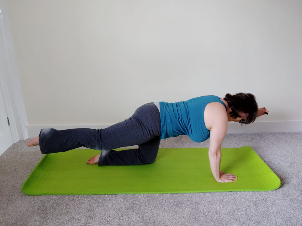 * Pilates Video Library Access *